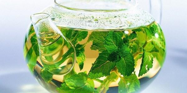 Крапивный чай польза и вред