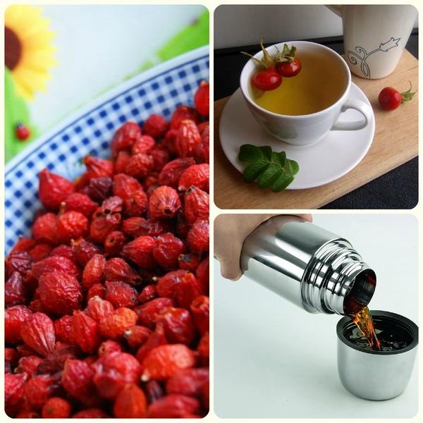 Отвар шиповника как приготовить, как пить, польза и противопоказания. Как правильно заваривать шиповник сушеный в термосе, чтобы сохранить витамины?