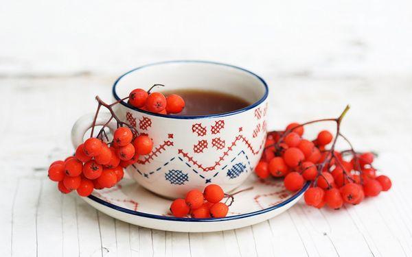 Чай с рябиной: полезные свойства, противопоказания