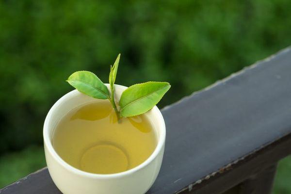 Употребление зеленого чая для похудения