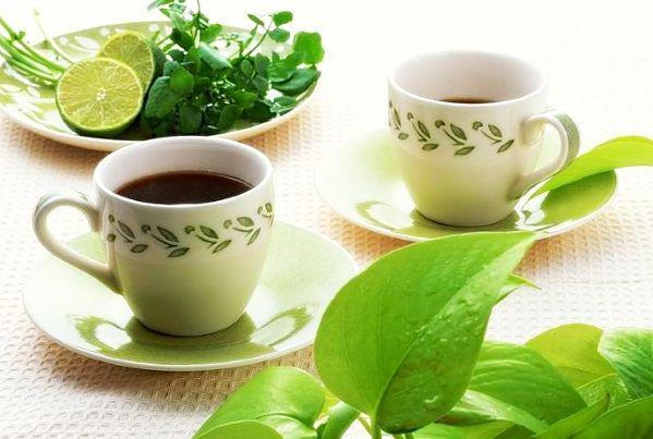 чай без кофеина