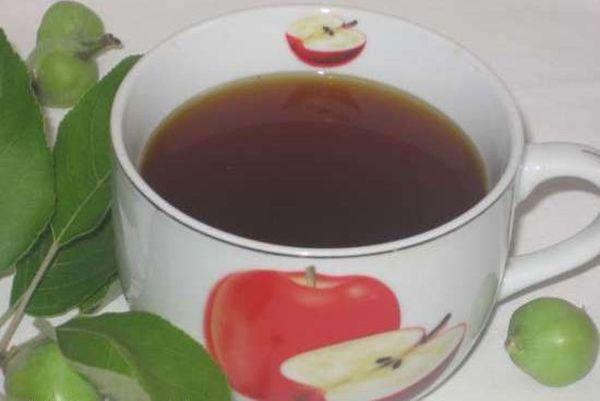 листок яблони заварка