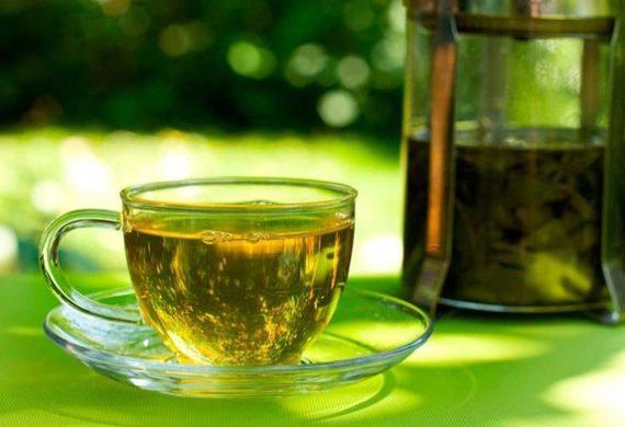 Действие зеленого чая на организм