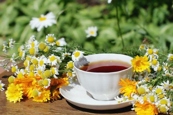 чай для иммунной системы