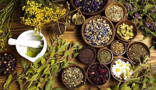 Травы для очищения организма от шлаков и токсинов - Огород, сад, балкон