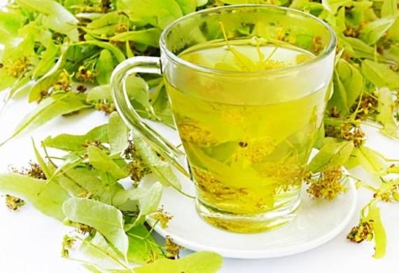 Липовый чай, полезные свойства и противопоказания