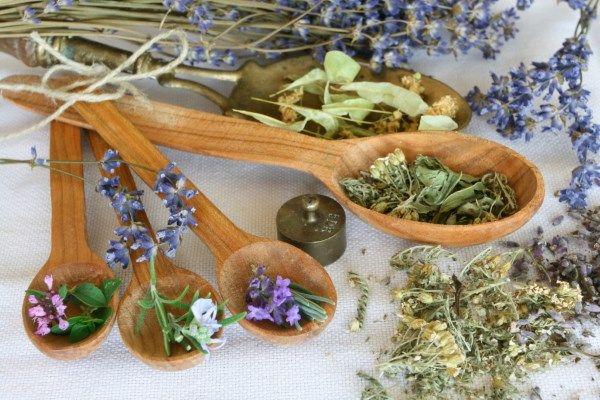 Фито чаи для очищения организма