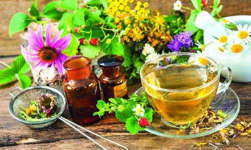 Почечный сбор: польза и эффективность лекарственного состава