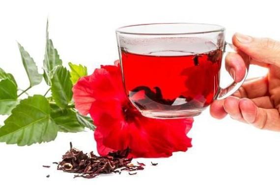 Чай гибискус полезные свойства