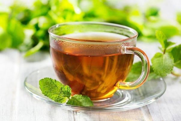 Чай с мятой при беременности можно или нет