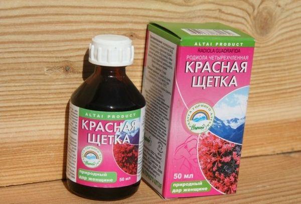 Красная щетка: полезные свойства, применение в медицине