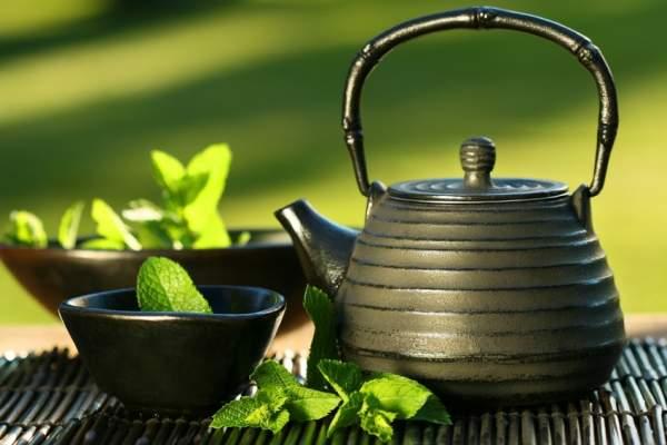 Зеленый чай, чем отличается от черного, как выбрать