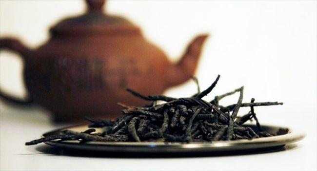 Чай Кудин: полезные свойства, способы приготовления