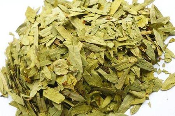 Сенна трава — целебные свойства растения, применение