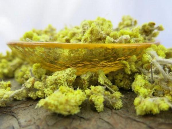 Трава бессмертник: полезные свойства, противопоказания
