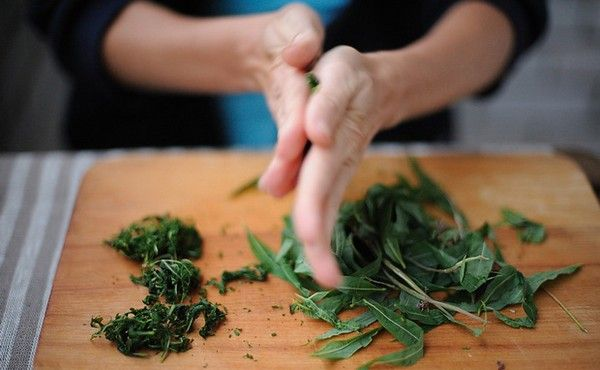 Ферментация и окисление в производстве чая на фабрике и дома