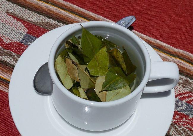 Чай из коки — напиток стран Южной Америки. Свойства.