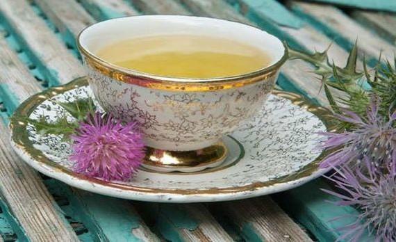 Чай из семян расторопши — защита печени. Применение.