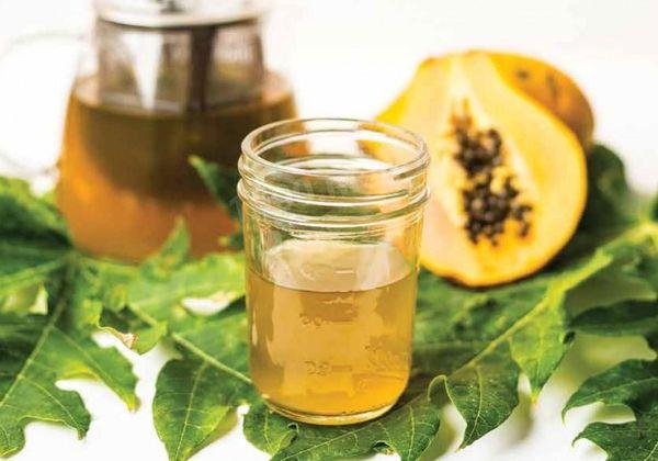Чай из папайи: вкусный или полезный? Применение чая