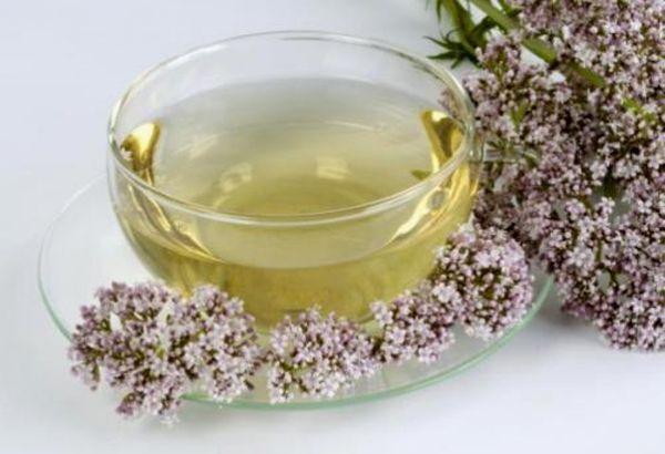 Мнение врача: в каком возрасте можно давать пить детям чай с валерианой, чтобы такой напиток не навредил ребенку