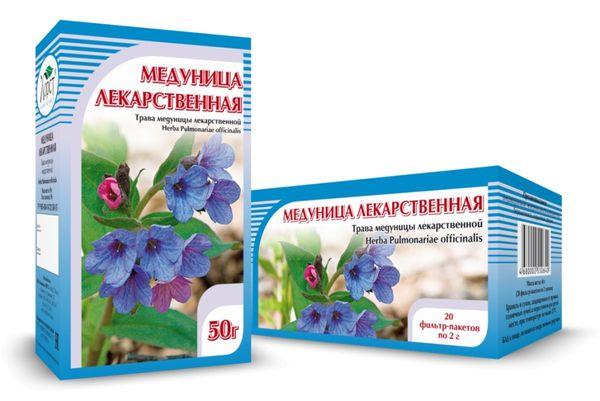 Трава медуница – полезные свойства растения-хамелеона, вред