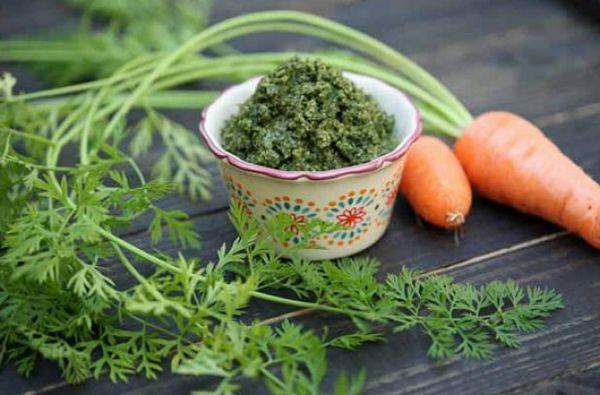 Морковная ботва – полезные свойства и противопоказания растения