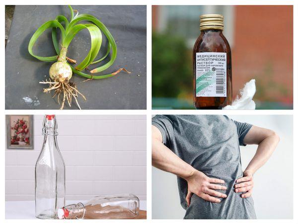 Настойка индийского лука: лечебные свойства и применение растения