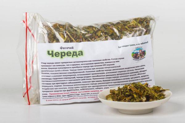 Череда, полезные свойства и противопоказания золотой травы