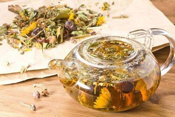 Чай при цистите – польза и виды. Польза трав при цистите