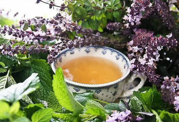 Какие травы при климаксе можно принимать? Рецепты полезных чаев